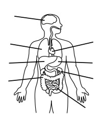 Human Body Outline Printable - Cliparts.co
