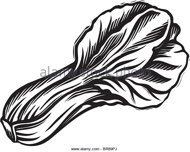 Pechay Clipart Black And White 9 Clipart Station
