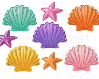 Color Seashells And Starfish Clipart Clipground