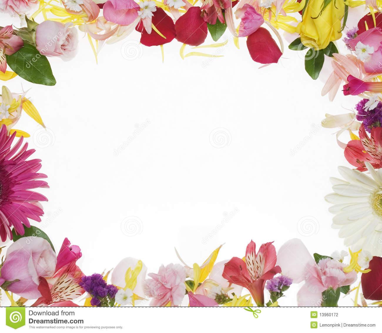 Hd Wallpaper Texture Fall Harvest Flower Boreder Clipground