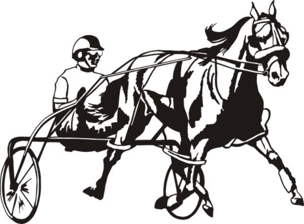 pony harness racing record