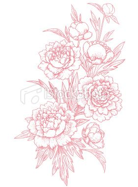 Vintage Car Wallpaper Transparent Japanese Peonies Clipart Clipground