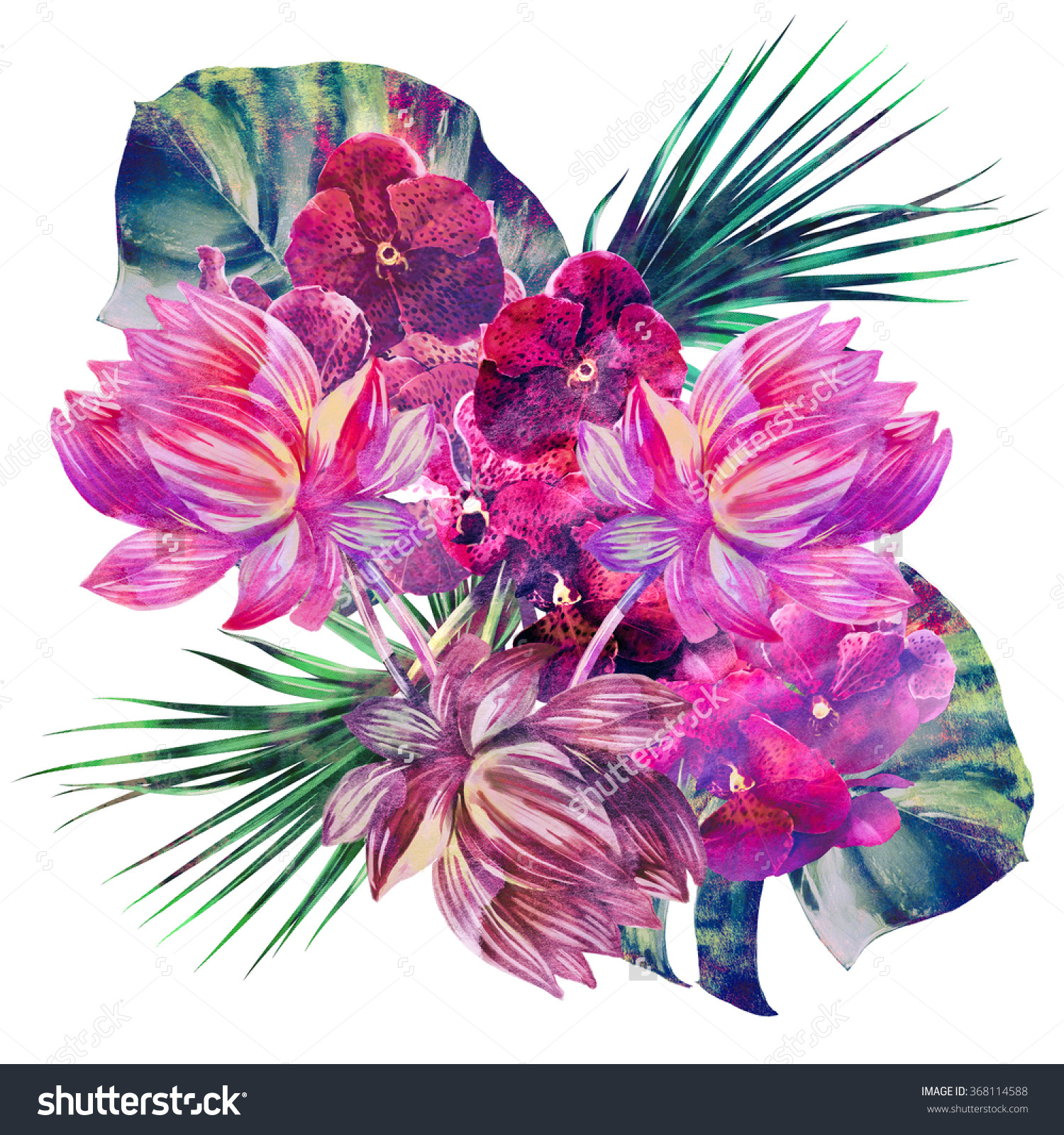 Tropical Artwork Tropical Lotus Clipart Clipground