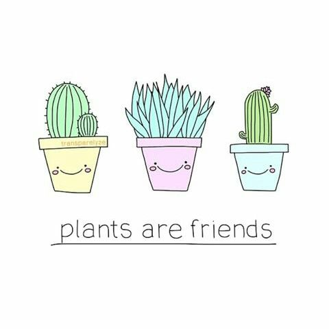 Cute Pineapple Big Wallpapers Tumblr Aesthetic Clipart Clipground