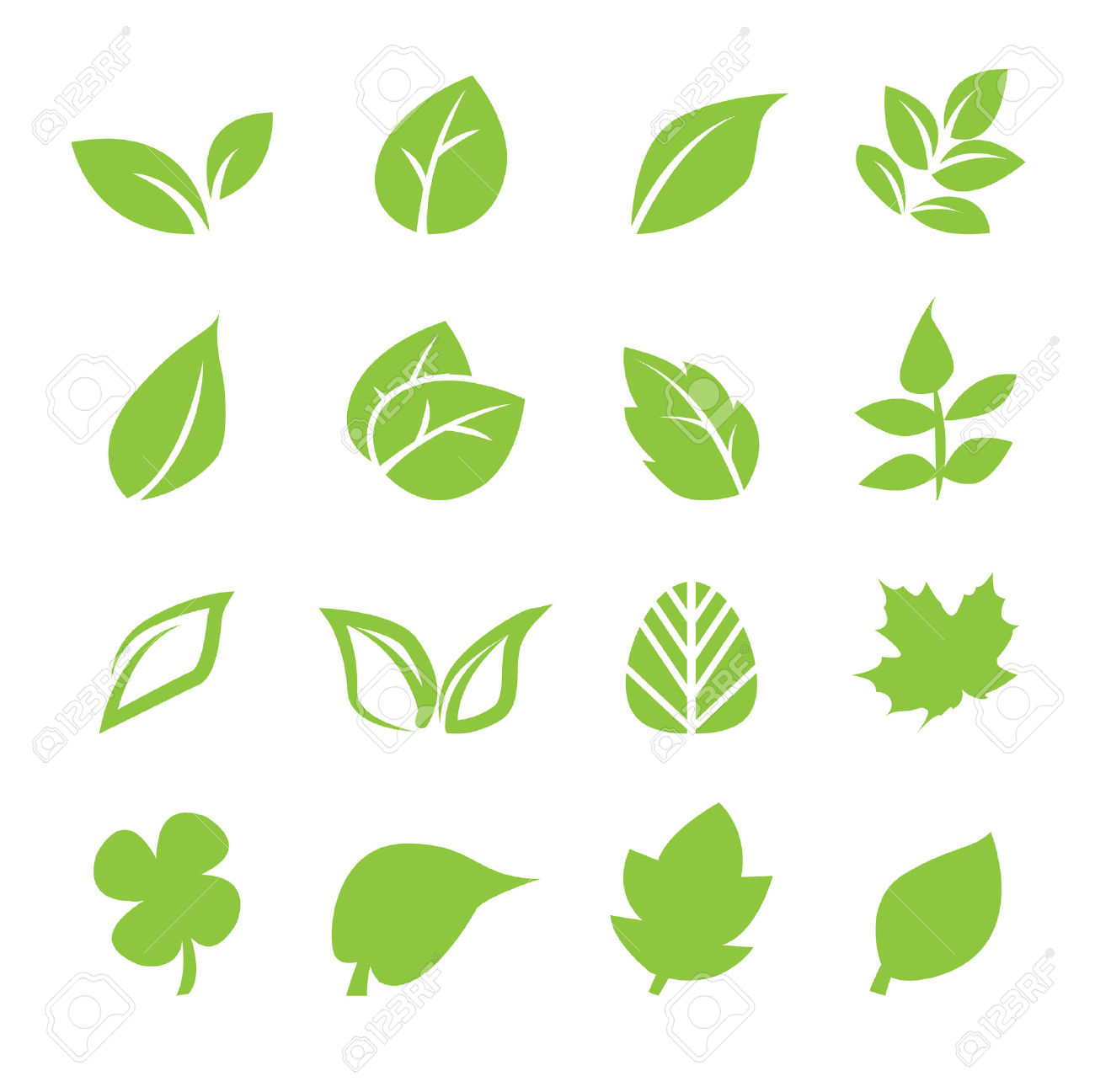Cute Locker Wallpaper Young Leaf Light Green Leaf Vine Clipart Clipground
