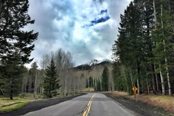 Snowbowl Road