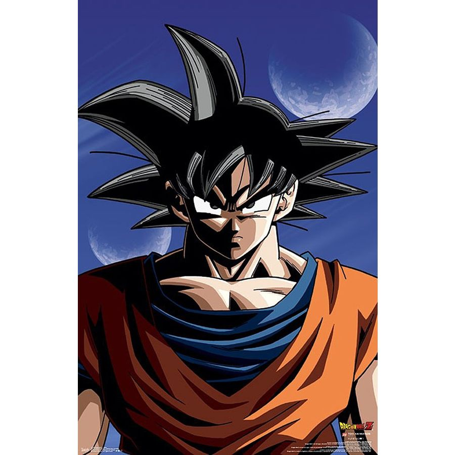 Dragonball Z Bettwäsche Dragon Ball Z Poster Goku