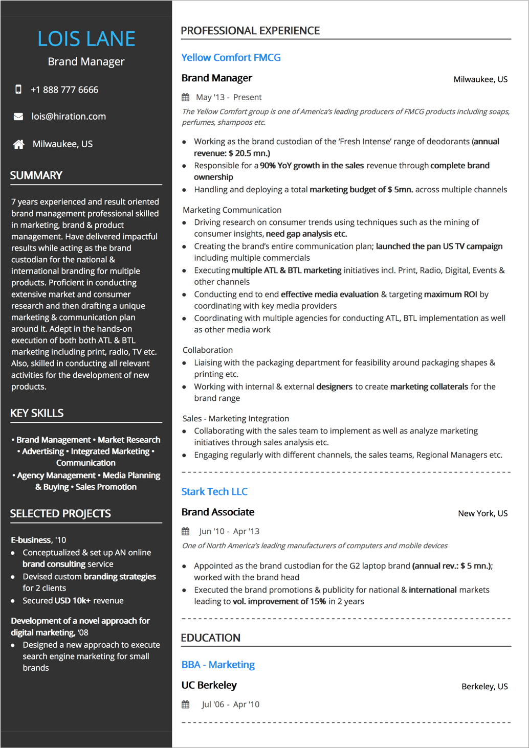 resume examples for large companies