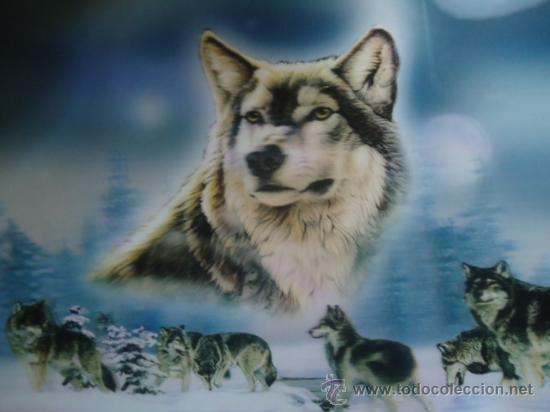 Ice Wolf 3d Wallpaper Download Bonita Lamina Tama 241 O 58x39 Cuadro Efecto 3d Comprar