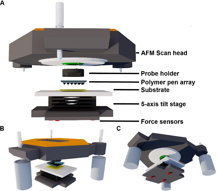 Large-area Scanning Probe Nanolithography Facilitated by Automated