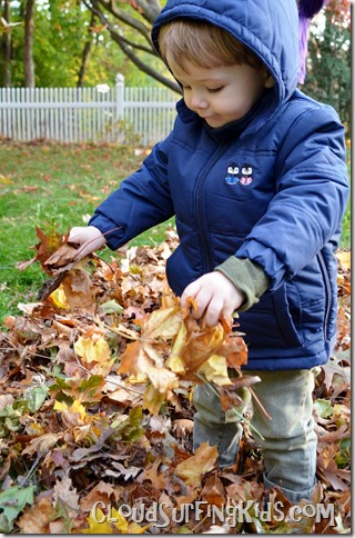 cozywoggle jacket review