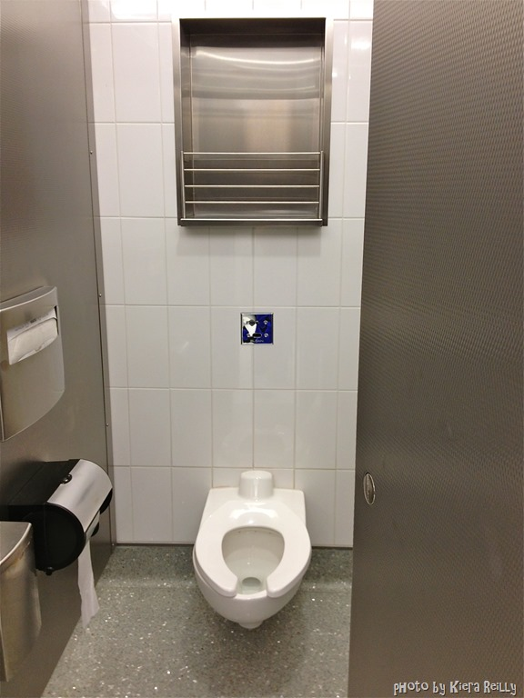 How To Find The Best Airport Restroom Cloud Surfing