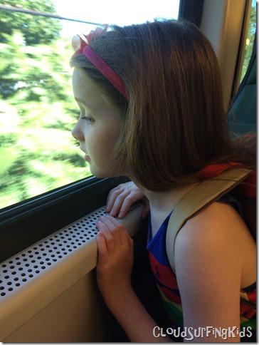 Looking out Train Window LIRR