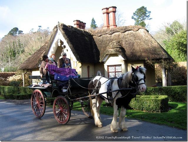 Jaunting Cart Killarney NP