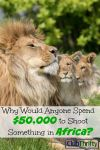 Why Would Anyone Spend $50,000 to Shoot Things in Africa?