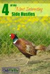 4 of My Most Interesting Side Hustles