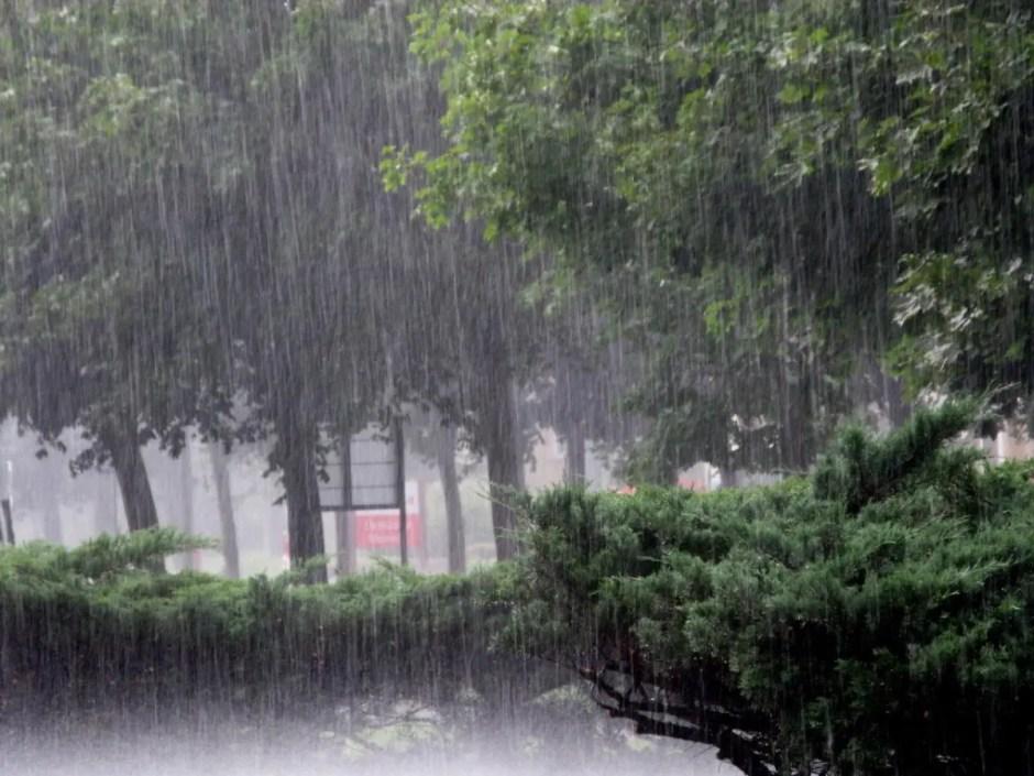 ploaie torentiala cluj