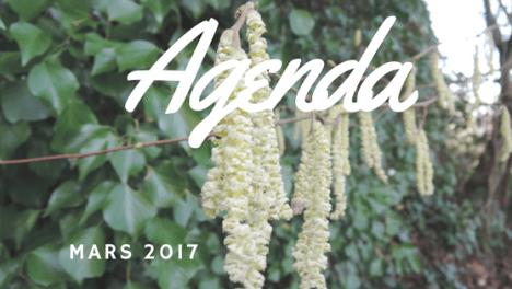 agenda mars 2017 l harmonie d ardwen geobiologie ardennes