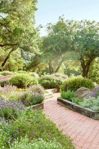 40 Front Yard and Backyard Landscaping Ideas