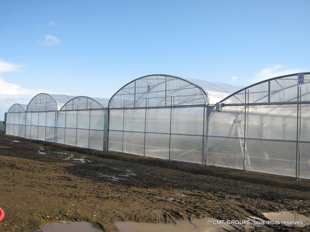 Serre Tunnel Svl Plastic Greenhouse Cmf Cultivations Cultivation Greenhouse Cmf
