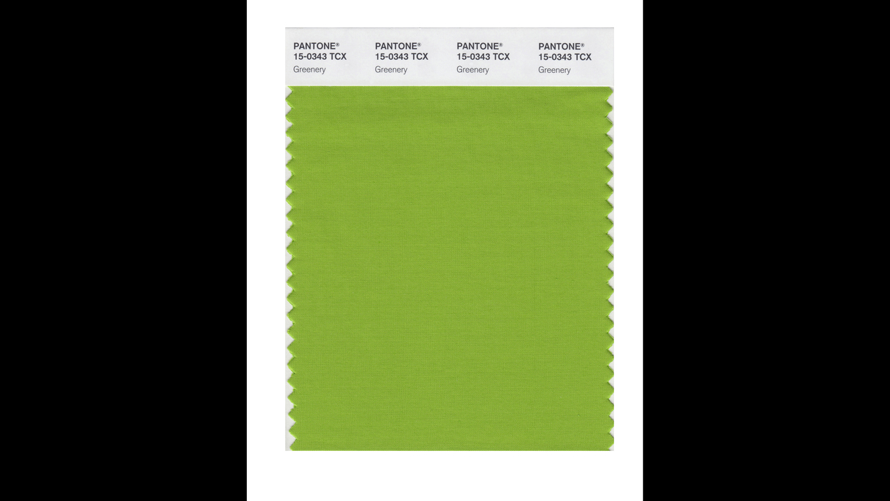 Greenery Pantone Pantone Color Institute S Color Of The Year Is Greenery Kiro Tv