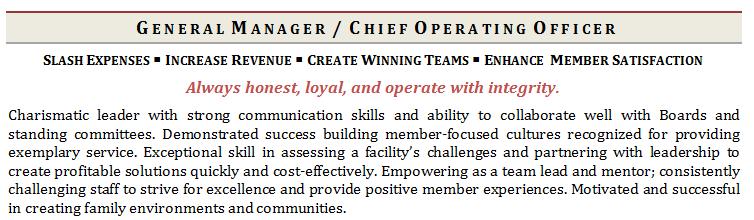 resume profile blurb examples