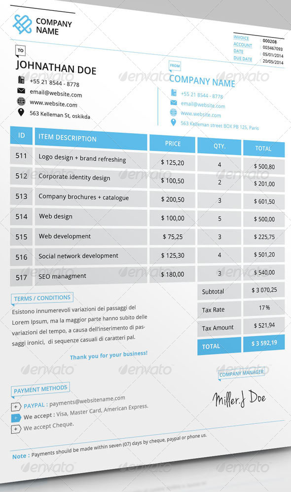 What Is a Professional Invoice? A Complete Beginner\u0027s Guide - professional invoice template