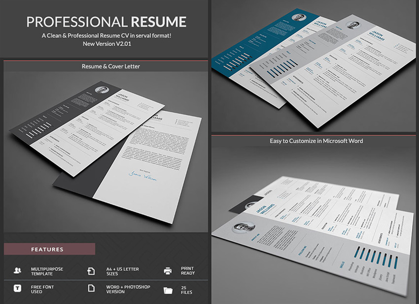 20+ Professional MS Word Resume Templates With Simple Designs - making resume in word