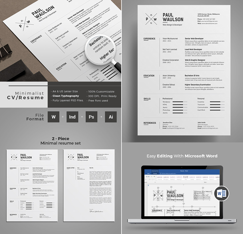 20+ Professional MS Word Resume Templates With Simple Designs - professional it resume format