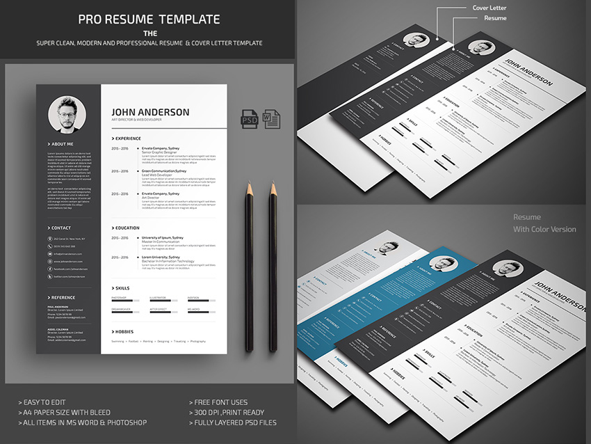 20+ Professional MS Word Resume Templates With Simple Designs - it professional resume template word