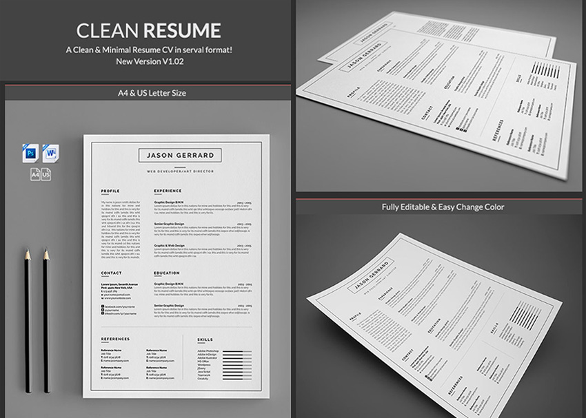 20+ Professional MS Word Resume Templates With Simple Designs - clean resume template