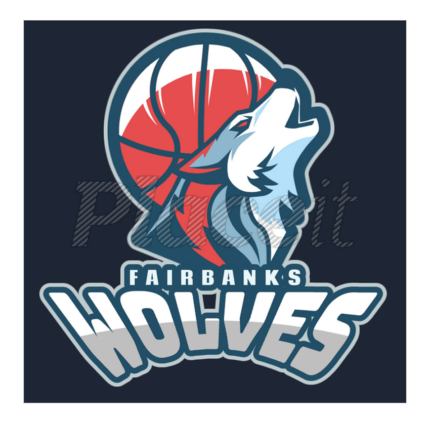 12+ Best Sports Team Logos to Quickly Make Online