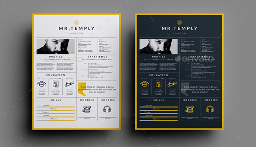 7 Striking Print Resume Templates for Visual Artists - visual resume