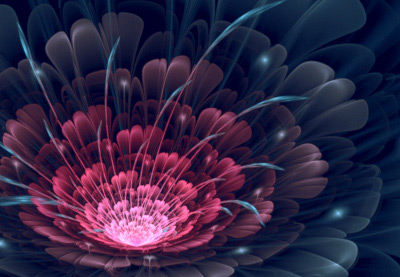 Android 3d Live Wallpaper Tutorial Fractal Art Advanced Flowers In Apophysis