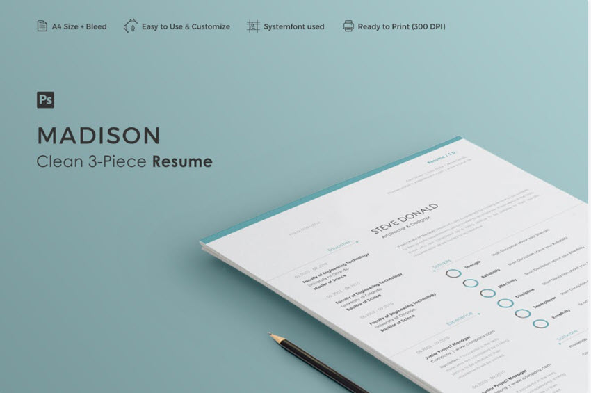 20 Simple Resume Templates (Easy to Customize  Edit Quickly)