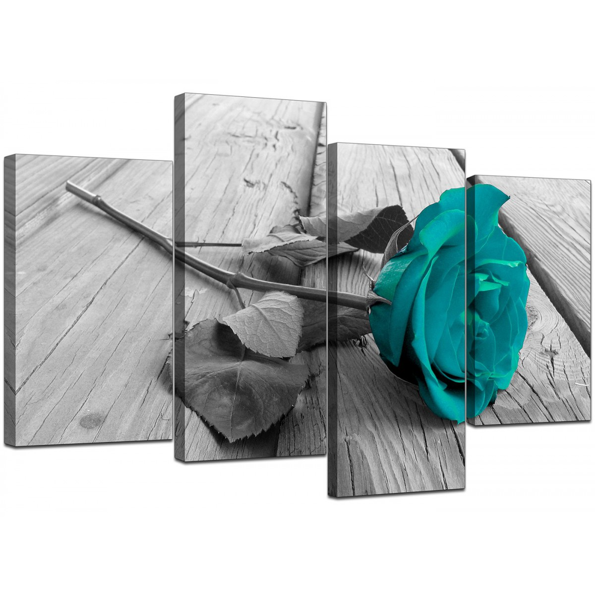 Black And White Canvas Prints Canvas Prints Uk Of Teal Rose In Black And White For Your