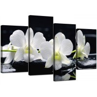Canvas Wall Art of Orchids in Black & White for your ...