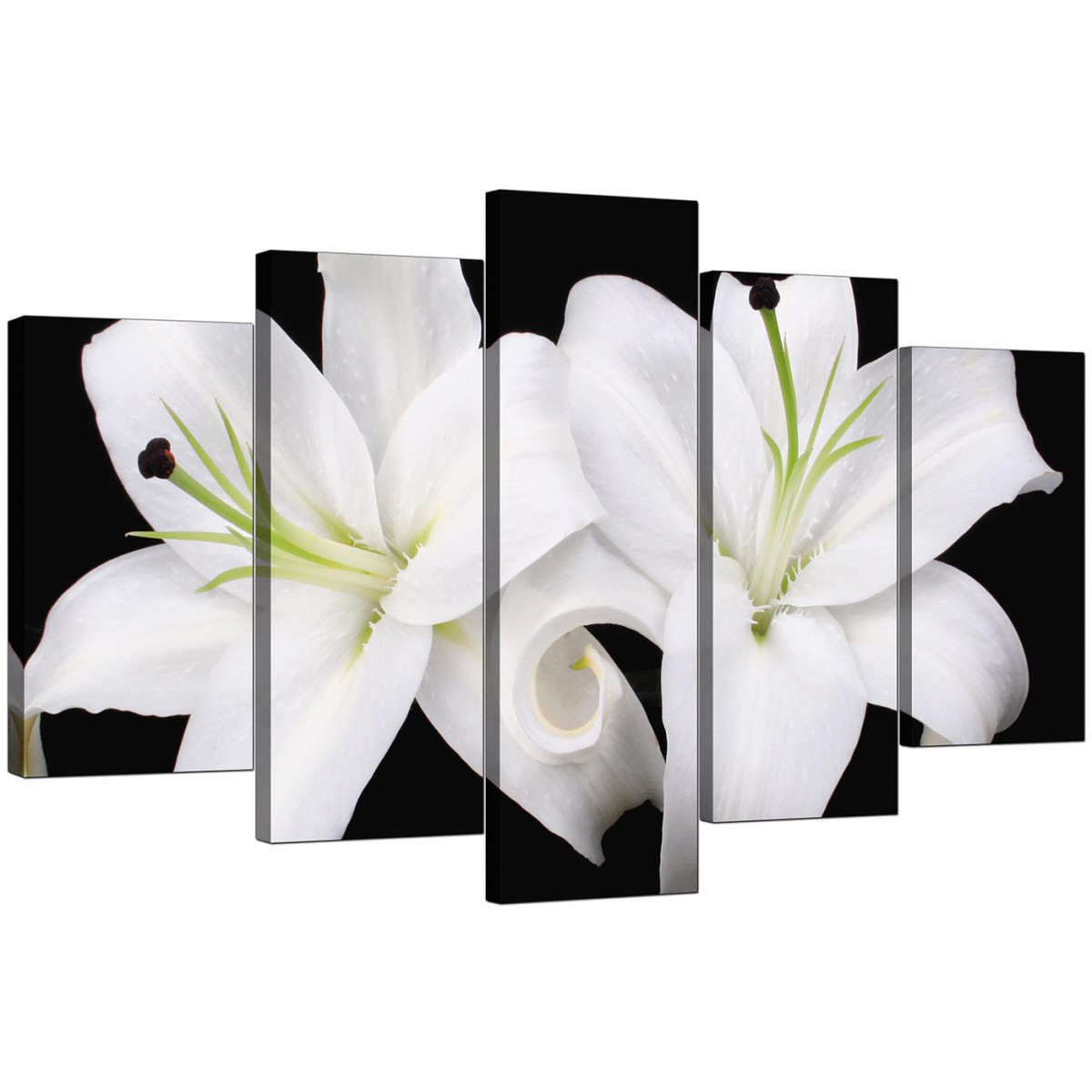 Black And White Canvas Prints Extra Large Lilies Canvas Prints Uk 5 Piece In Black And White
