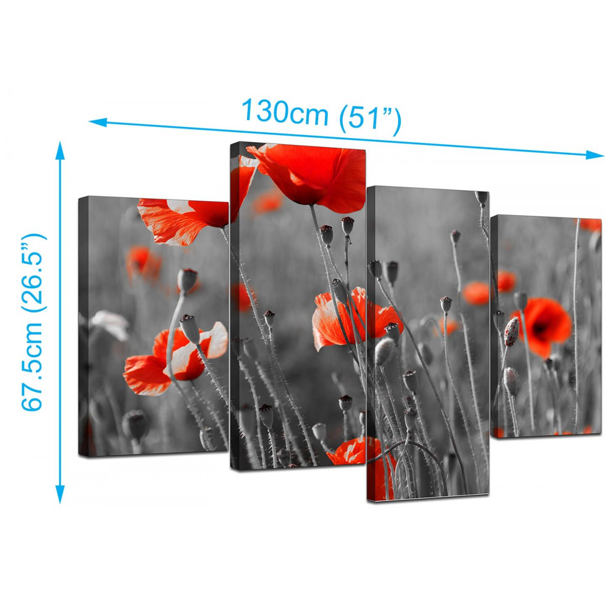 Extra Large Xl Floral Canvas Picture Red Poppys Framed - Garten Bambus Red Zebra