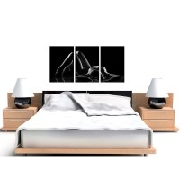 Sensual Woman Canvas Wall Art Set of Three for your Bedroom