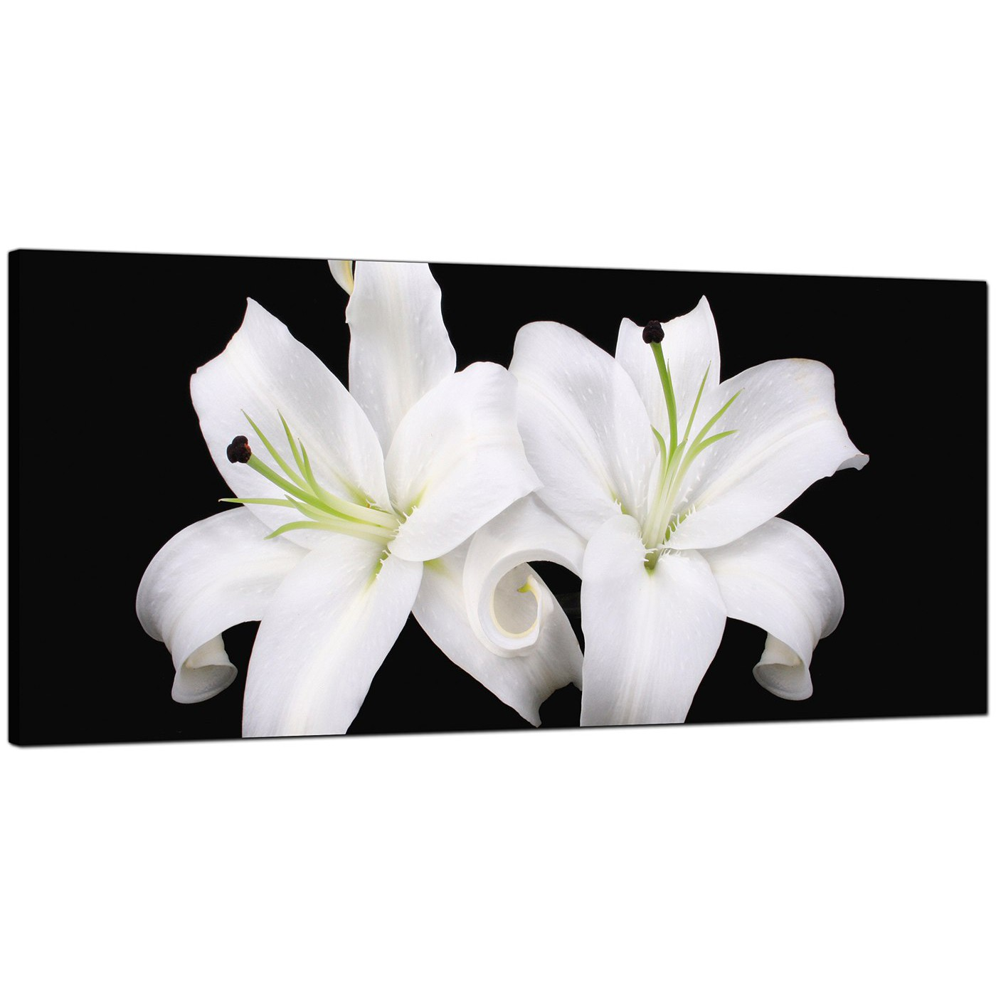 Black And White Canvas Prints Large Black And White Canvas Prints Of Lily Flowers