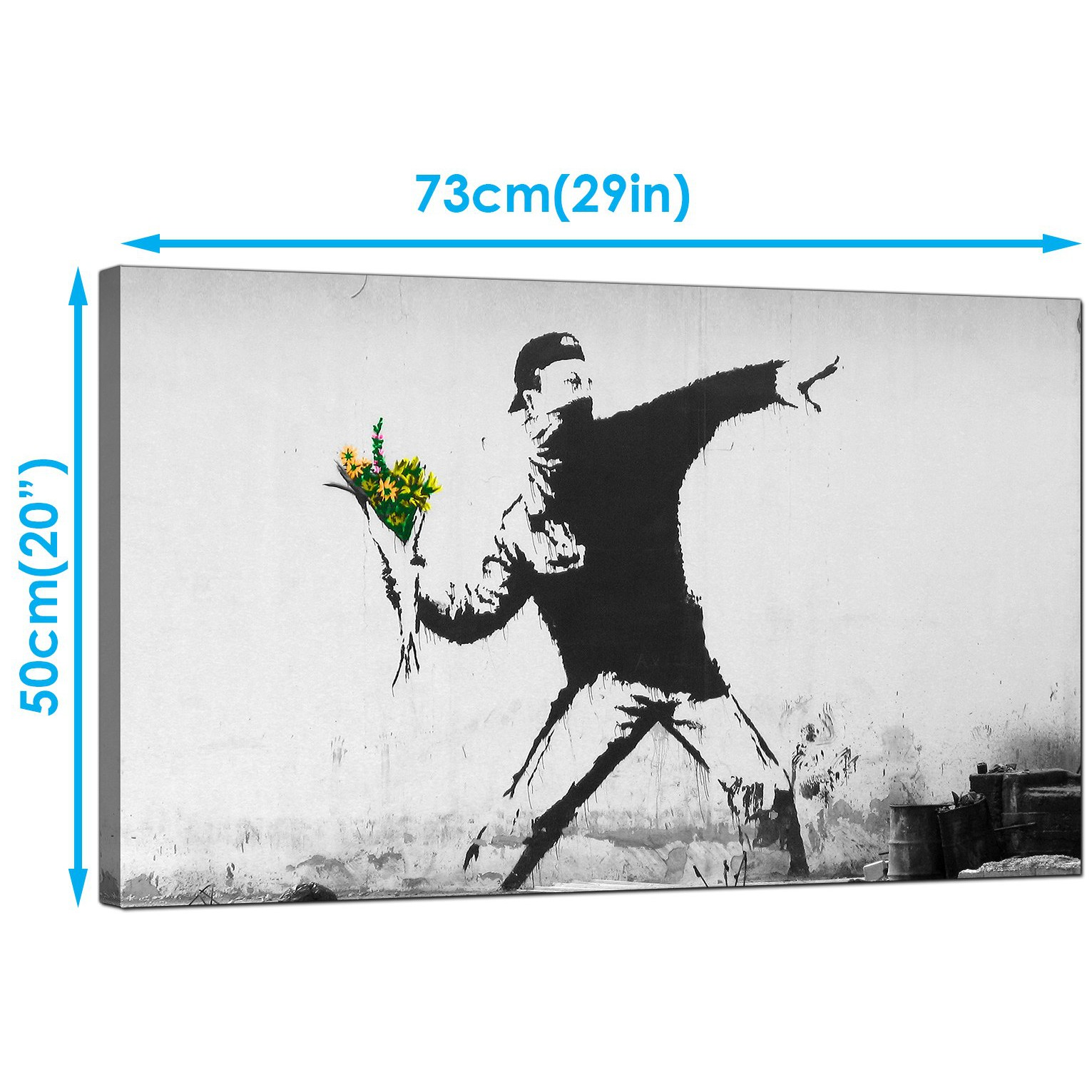 Banksy Canvas Art Large Banksy Flower Thrower Modern Canvas Art 73cm 166m