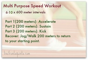 Multi Purpose Workout