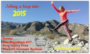 The Training Begins: Immune Support for the Long Run