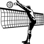 volleyball blocker