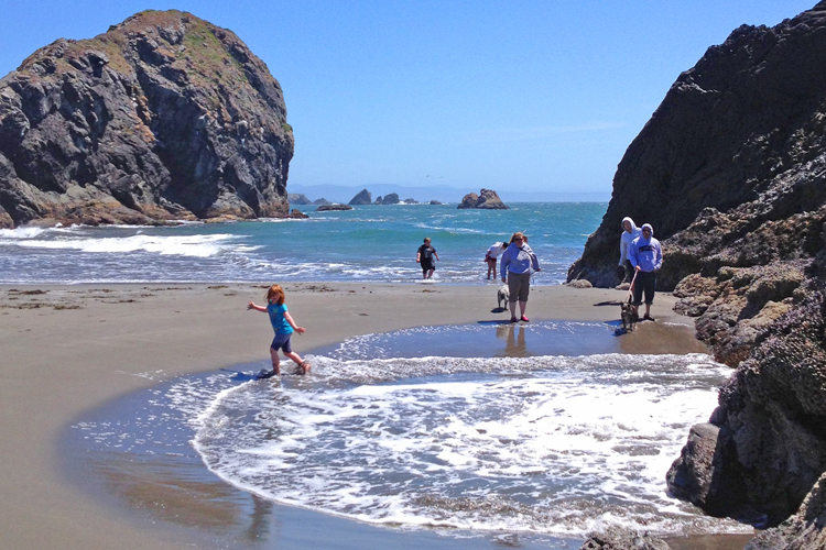 Attractions Feature Stories About Brookings Oregon