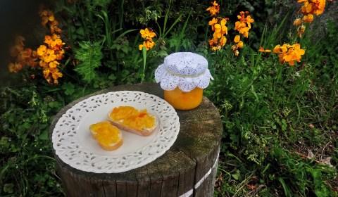 mermelada de naranja aamarga
