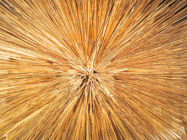 close up of a sculpture by Harry Bertoia