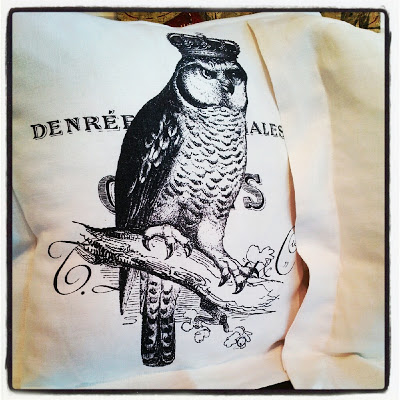 flour sack pillow with an owl sitting on a branch wearing a crown printed on the front