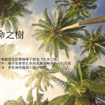 椰子油的重要觀念